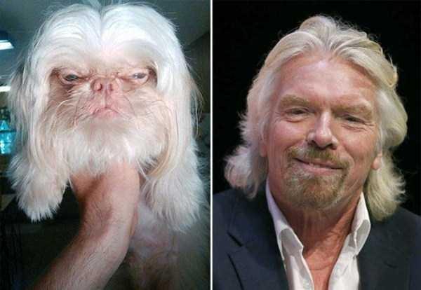 Khi người và chó cưng giống hệt nhau.