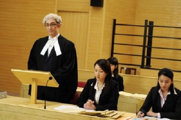 Luật sư là ngành