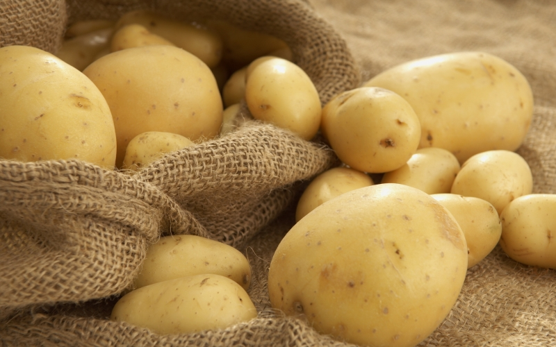Bên trong khoai tây chứa nhiều tinh bột giúp làm trắng da nhanh chóng.