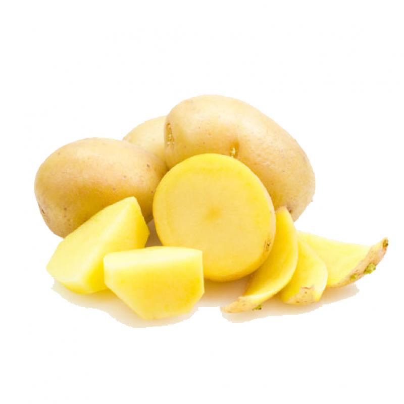 Khoai tây vừa là món ăn ngon vừa chữa đau dạ dày hiệu quả