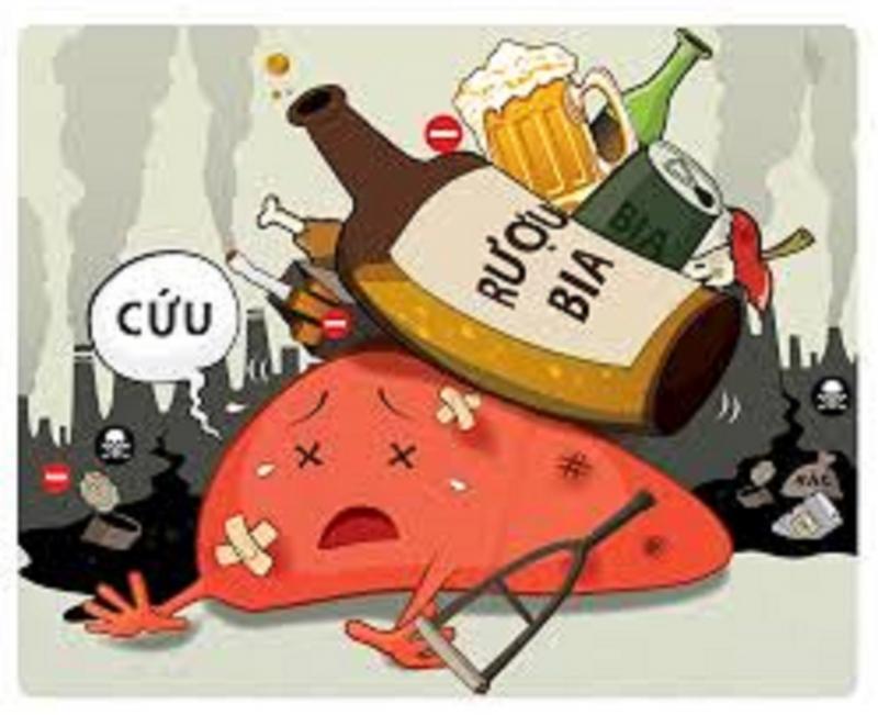 Hãy nói không với bia, rượu - Nguồn: Internet