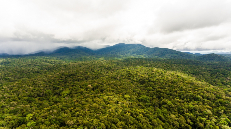 Khu bảo tồn thiên nhiên Nâm Nung
