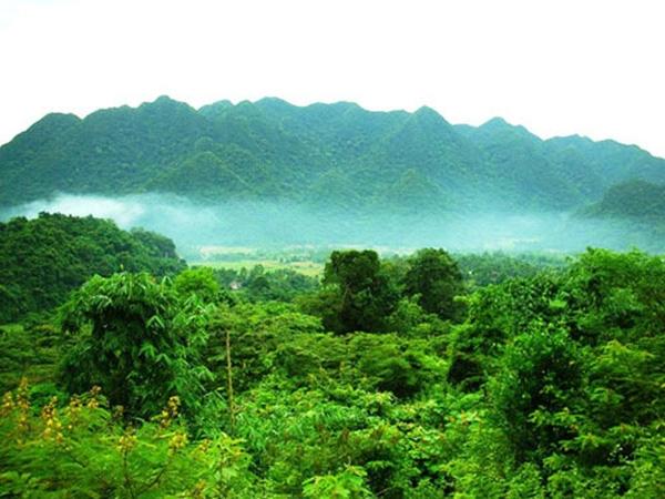 Khu bảo tồn thiên nhiên Pù Hu