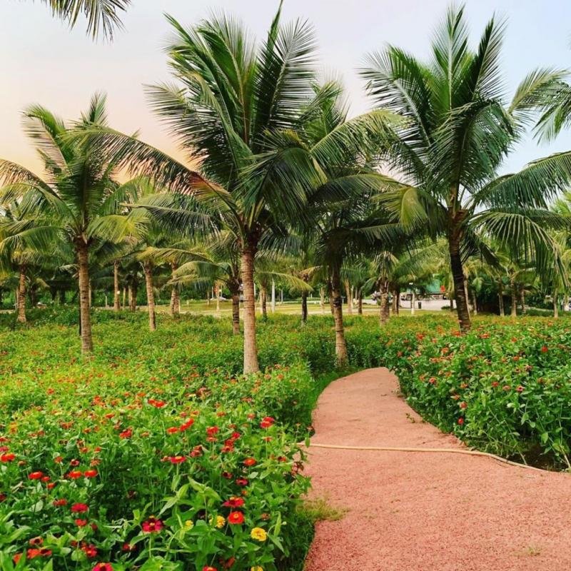 Ecopark ecological urban area