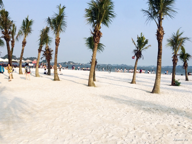 Bãi biển dài hơn 500m