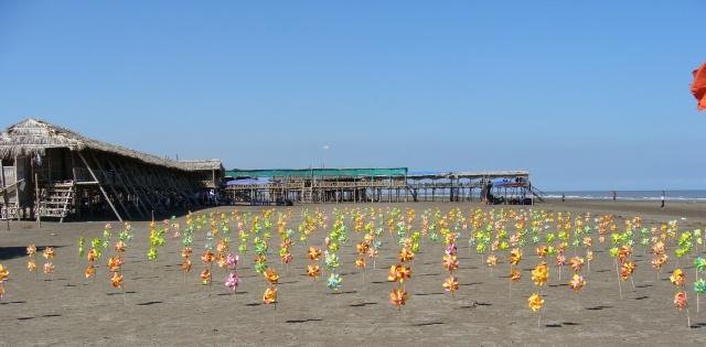 Hình ảnh những chiếc chong chóng trên bãi biển Cồn Vành thật lung linh, nhiều màu sắc