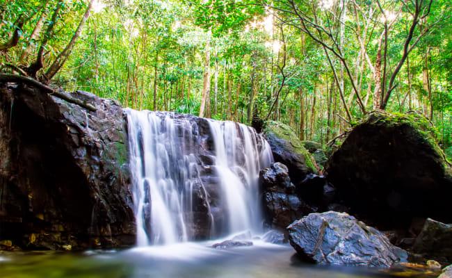Khu Du Lịch Sinh Thái Suối Tranh