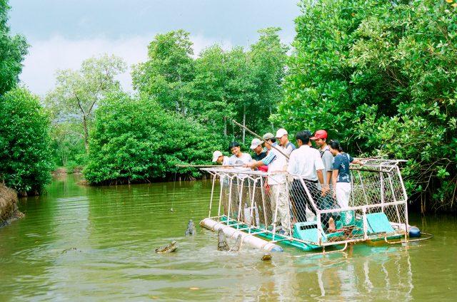 Destinations worth noting when entering Vam Sat tourist area are: Vam Sat bird sanctuary, Dam Doi and Tang Bong Tower.