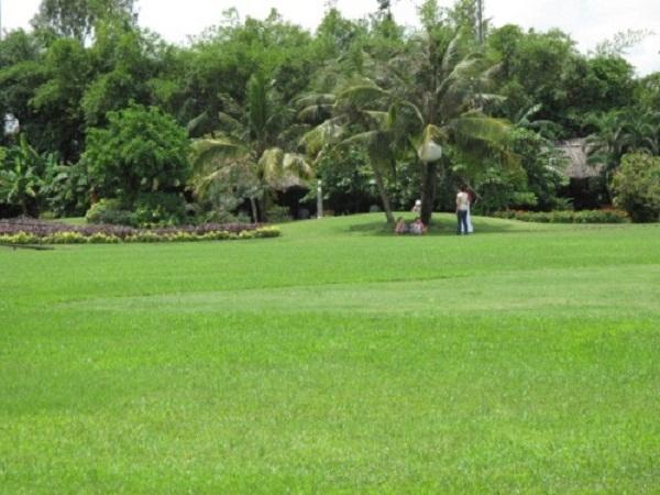Bãi cỏ xanh rì ở khu du lịch Văn Thánh