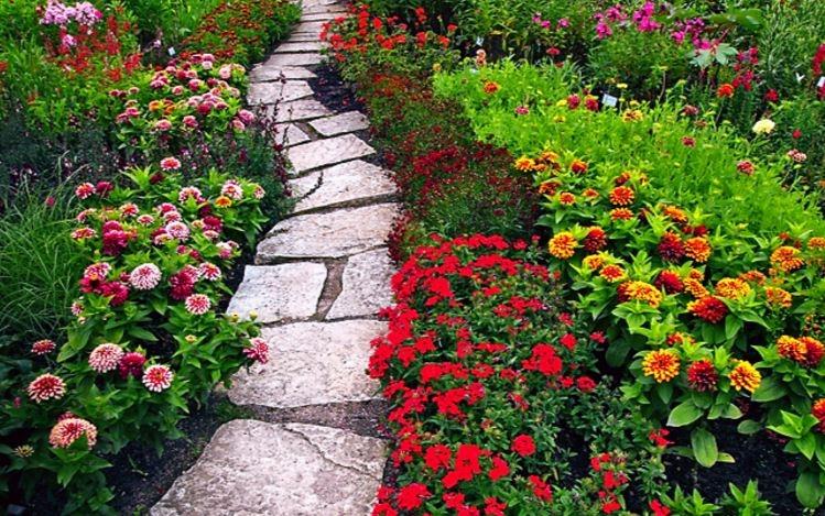 Khoảng vườn như đang tỉnh dậy sau một giấc ngủ dài