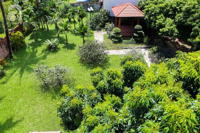 Khu vườn nhỏ nhà hàng xóm