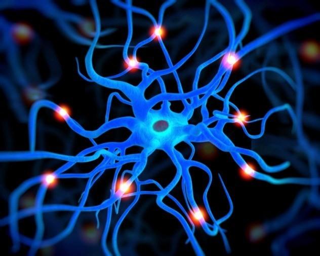 Kích thích hệ thần kinh