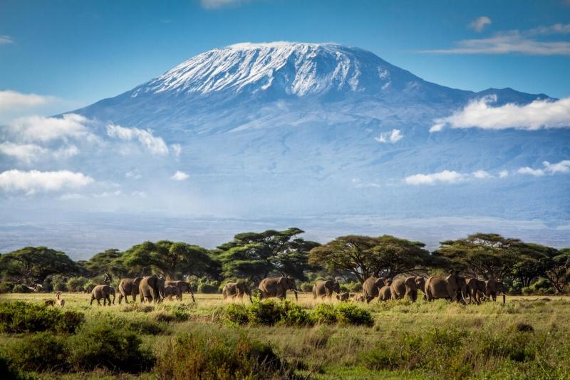 Kilimanjaro - Châu Phi