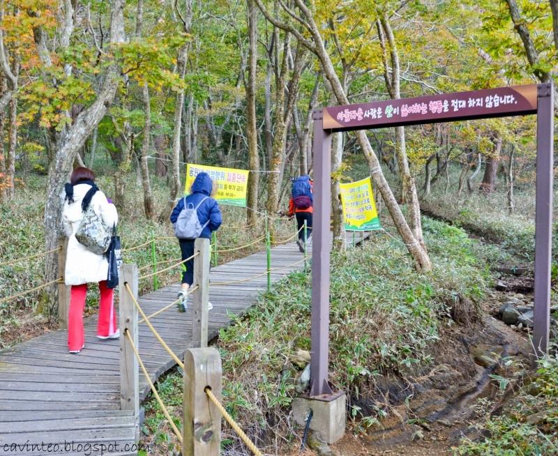 Đi bộ đường dài là một trong những hoạt động phổ biến nhất ở Hàn Quốc