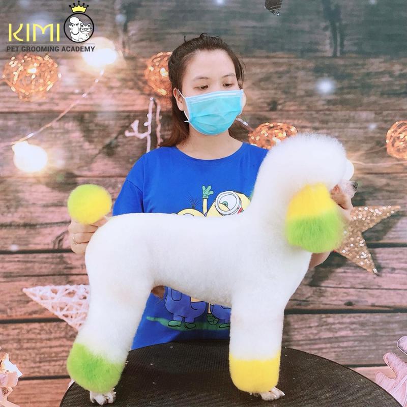 Kimi Pet - Thế Giới Thú Cưng (KIMI PET GROOMING ACADEMY)