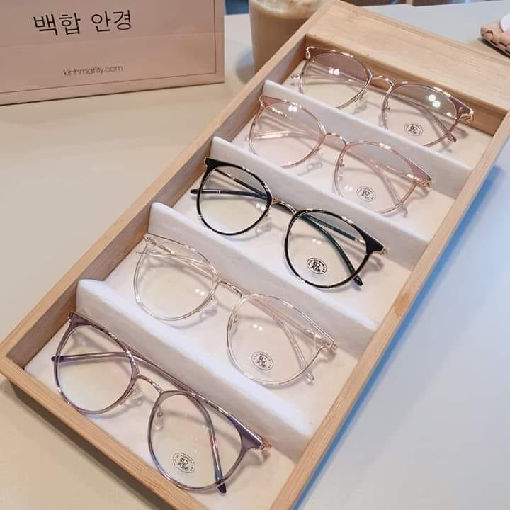 Kính mắt Ngọc Hà có mẫu mã rất đa dạng từ kính nam đến kính nữ, các mẫu từ truyền thống đến trẻ trung hiện đại, các loại kính cận, kính râm, kính cận râm…