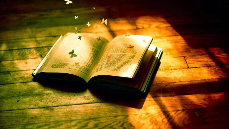 Top 5 kinh nghiệm để mở cửa hàng bán sách cũ kinh doanh tốt nhất