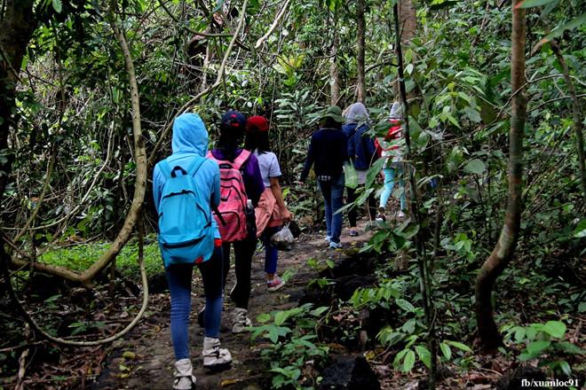 Top 6 Kinh nghiệm phượt Vườn Quốc gia Nam Cát Tiên chi tiết nhất