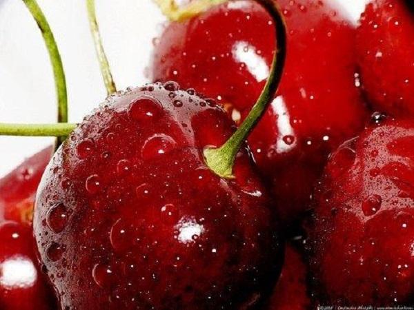 Cherry Úc tại Klever Fruits