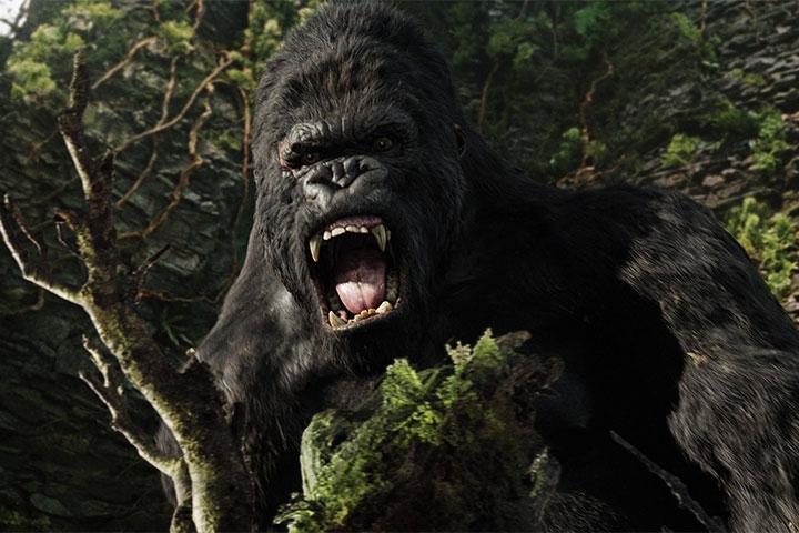 Kong có là kẻ sát nhân...