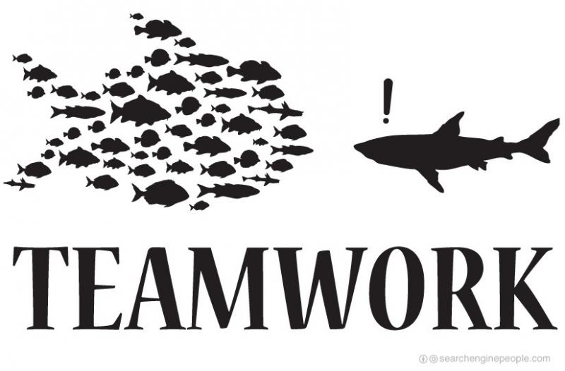 Kỹ năng làm việc nhóm - teamwork