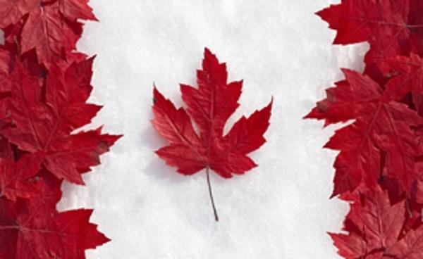 Lá phong - Biểu tượng của Canada