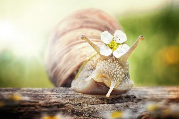 Thiền sẽ giúp bạn tận hưởng cuộc sống trọn vẹn hơn