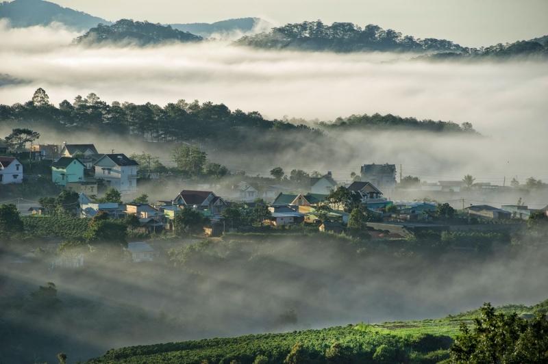 Cao nguyên Lâm Viên ẩn mình trong sương mù