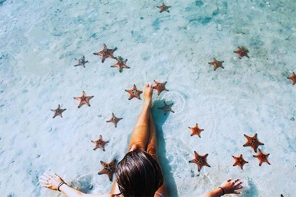 Những chú sao biển tại bờ biển