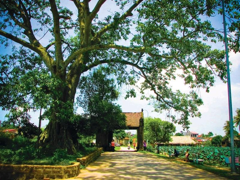 Cổng làng Mông Phụ dẫn vào làng cổ Đường Lâm - hình ảnh cổng làng đặc trưng của làng quê Việt