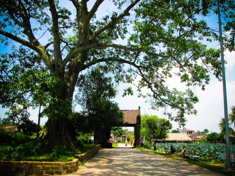 Một góc làng cổ Đường Lâm (Hà Nội)