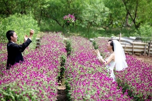 Làng hoa Mê Linh, địa điểm chụp ảnh cưới lạng mạn của Vĩnh Phúc