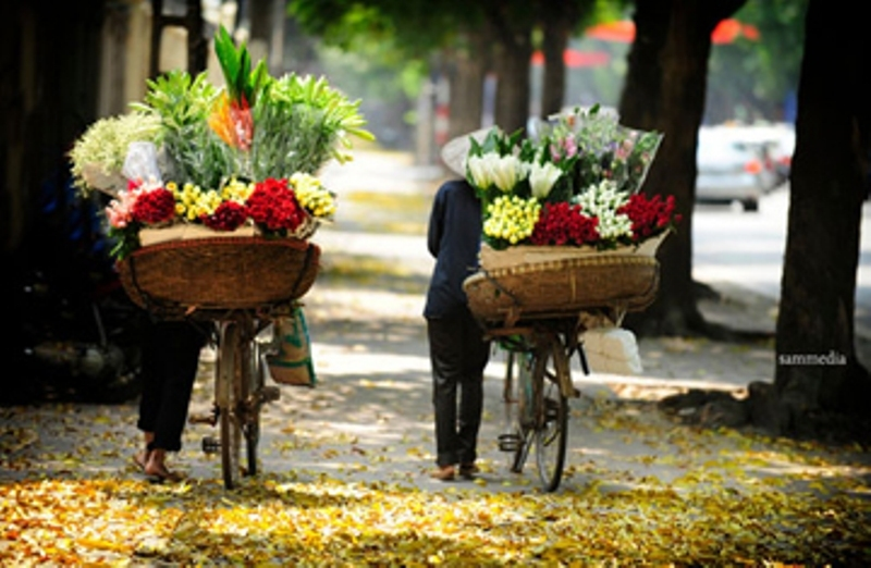 Hoa Ngọc Hà vẫn len lỏi khắp các con phố thủ đô