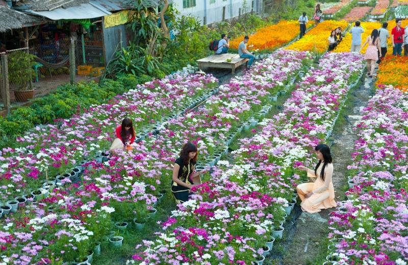 Nét đẹp làng hoa tại Sa Đéc