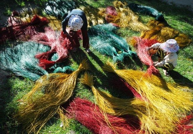 Những sợi cói được nhuộm màu và phơi trước khi đan
