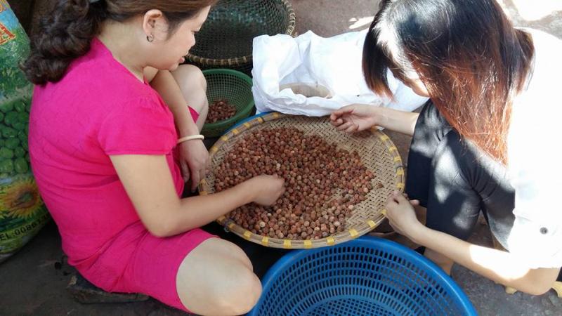 Người ta có thể tiện được cà những hạt gỗ rất nhỏ và đẹp đẽ để làm mành và gối xuất khẩu