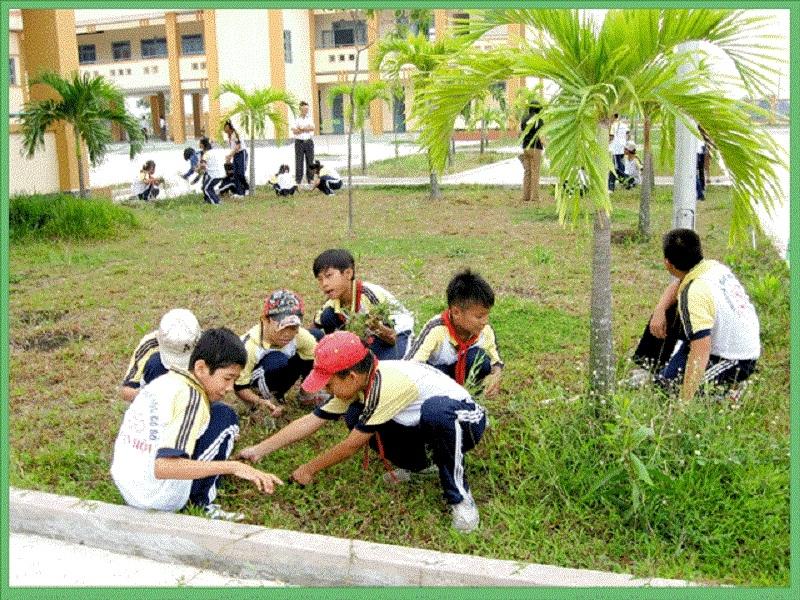 Học sinh tham gia buổi lao động cắt cỏ ở vườn trường.