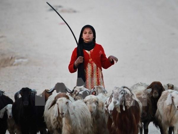 Ở nhiều quốc gia, phụ nữ phải lao động không công