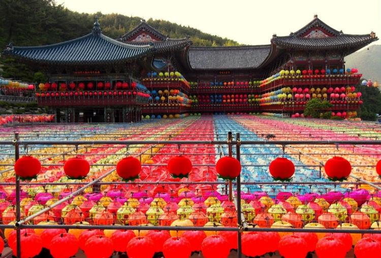 Toàn bộ ngôi chùa sẽ được trang hoàng trong hàng ngàn chiếc lồng đèn đủ màu sắc, đủ hình dáng