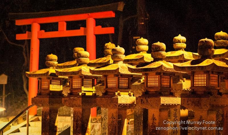 Những chiếc lồng đèn với hình dáng khác nhau tạo nên ánh sáng kì ảo cho lễ hội