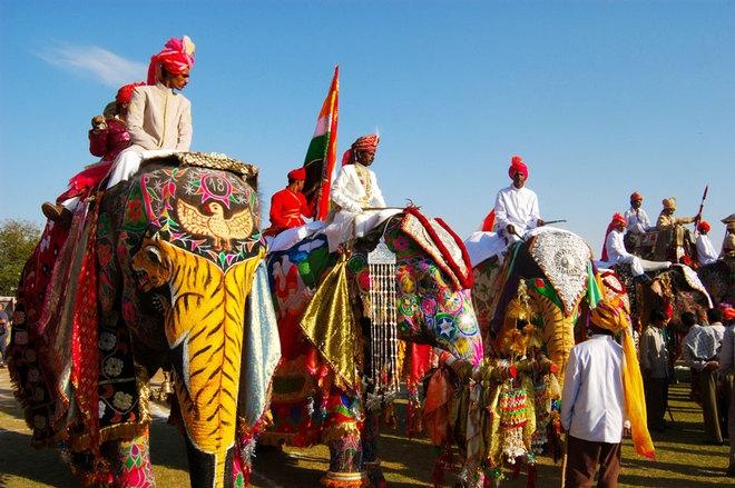Lễ hội voi ở Jaipur (Ấn Độ)