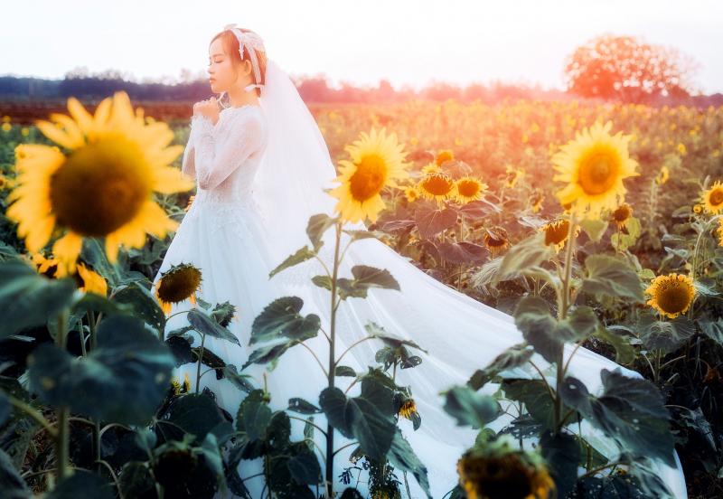 LeeKing Wedding