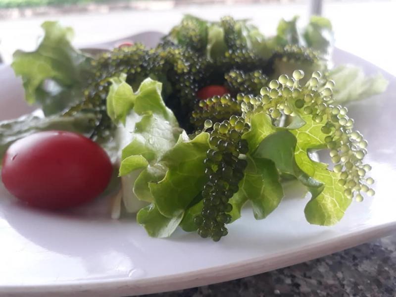 Salad rong nho của Lê's Home