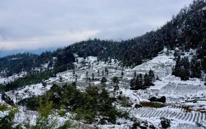 Mùa đông tuyết trắng tại Sapa
