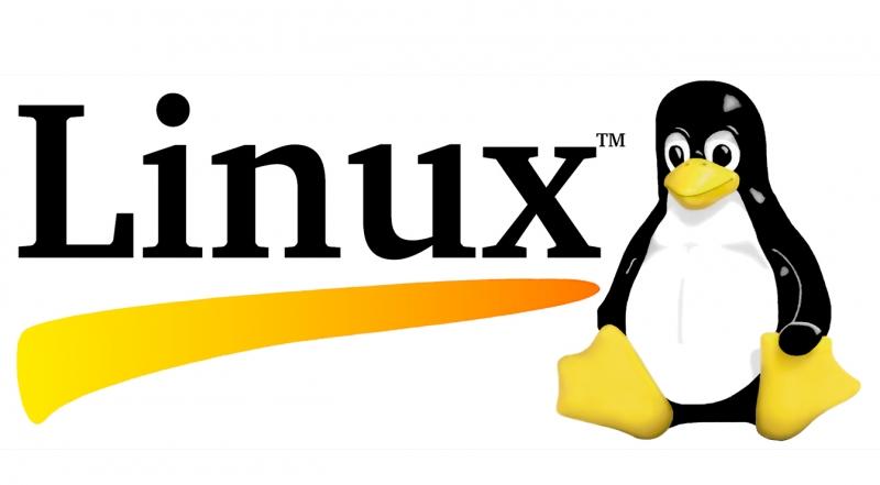 Dù ít được sử dụng nhưng Linux vẫn là một trong những hệ điều hành phổ biến nhất hiện nay
