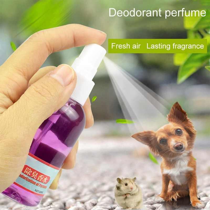 Top 5 loại nước hoa tốt nhất cho thú cưng