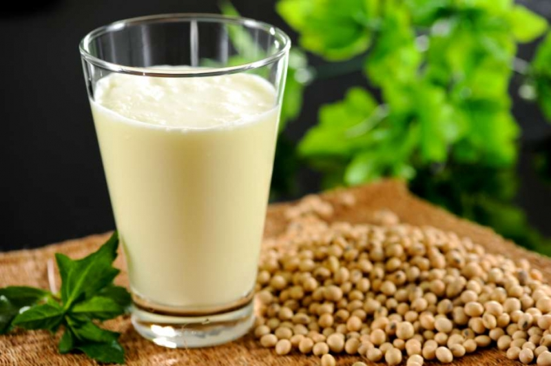 Top 15 cách làm các loại sữa từ thực vật ngon nhất