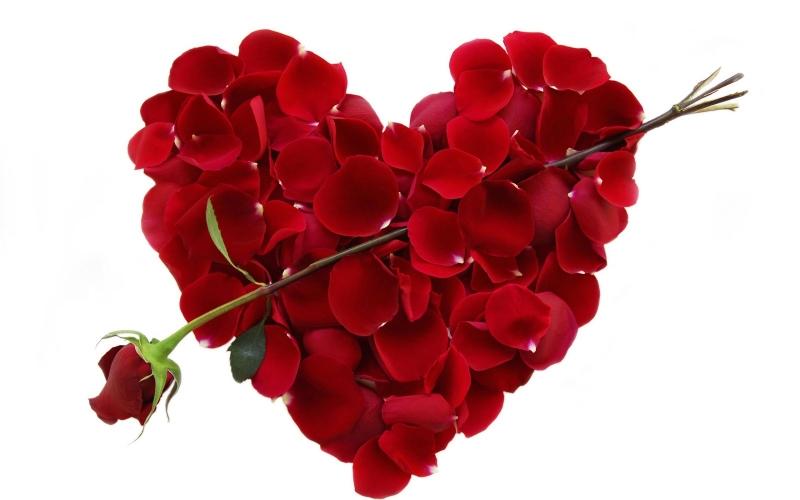 Lời chúc Valentine cho ai không còn cô đơn