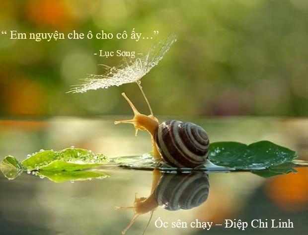 Lục Song - Ốc sên chạy, Điệp Chi Linh