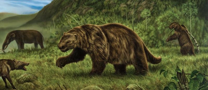 Kích thước lớn như một con voi, dài 6 m và nặng đến 4 tấn.